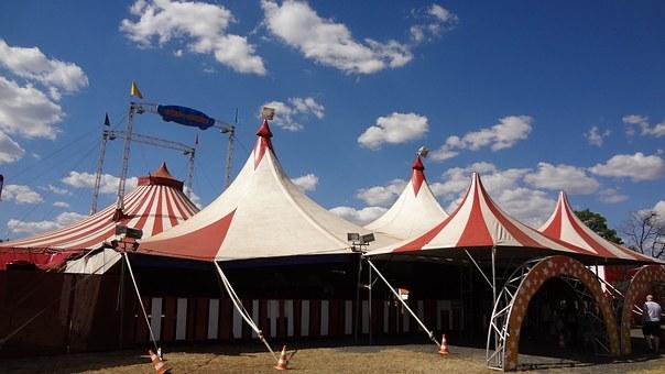circus-231549__340