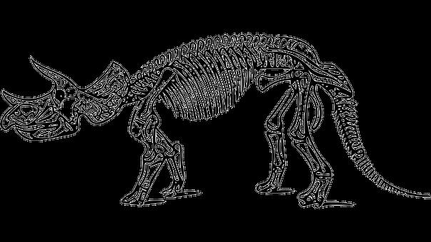 dinosaur-2525442__340
